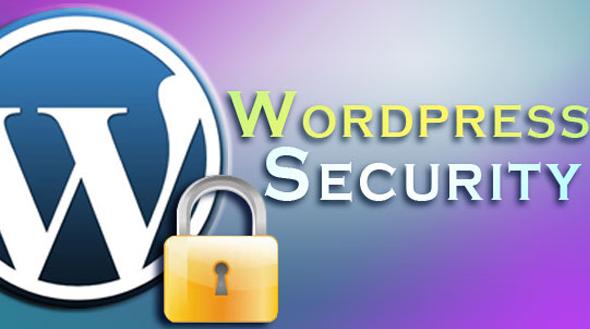 Top 5 WordPress Security Plugins
