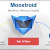 Monstriod WordPress Theme Review