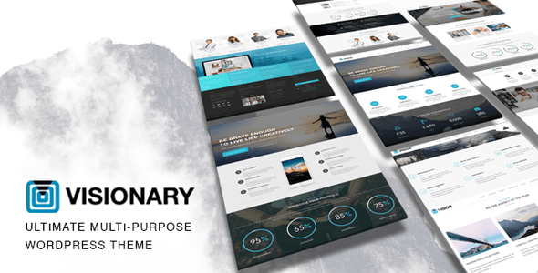 Vision - Multi-Purpose WP Theme