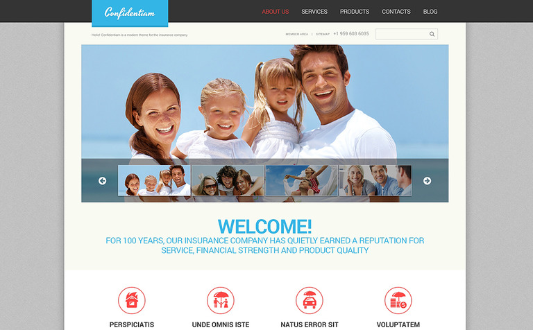 effective-insurance-wordpress-theme