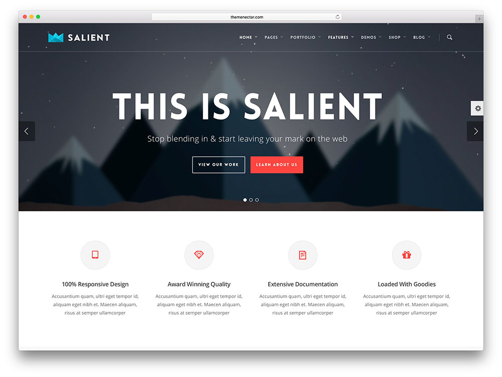 salient-modern-local-business-theme