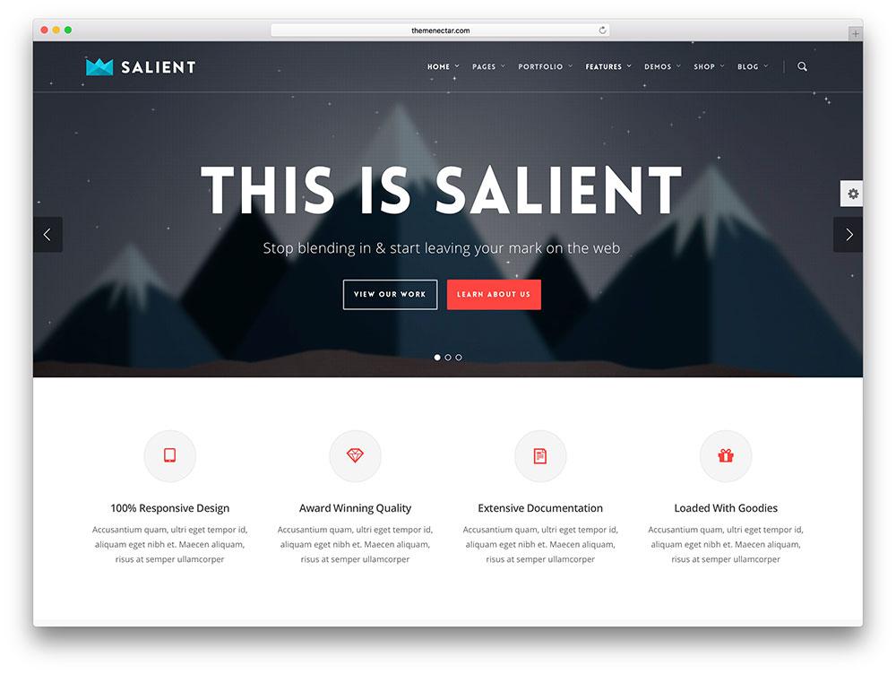 salient-modern-local-business-theme