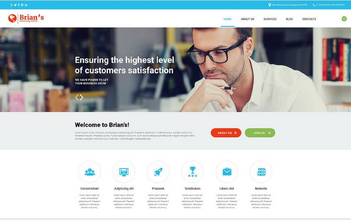 brians mobile ready business wordpress theme