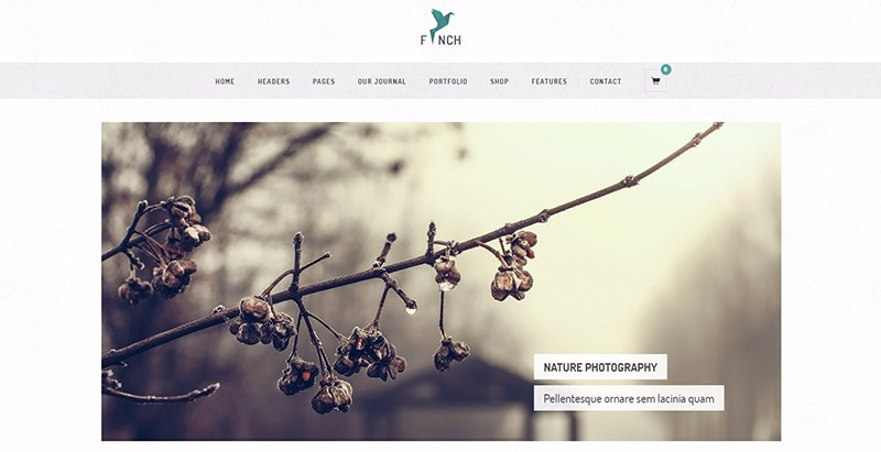 finch-web-photography-boostrap-theme