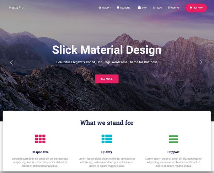 hestiapro wordpress website template